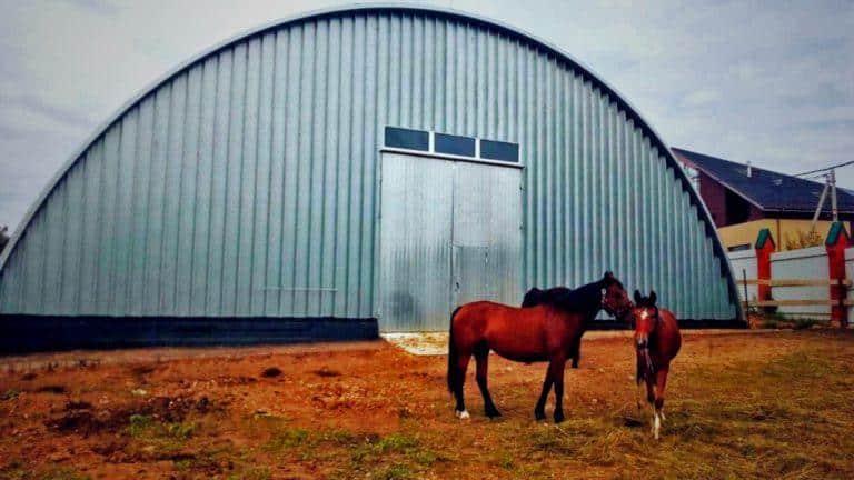 Благородные лошади на фоне бескаркасного ангара-конюшни